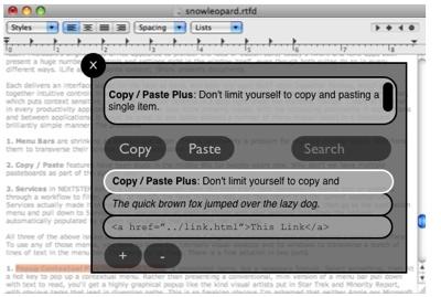 copy paste plus